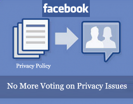 Privacy-Policy_No-More-Voting
