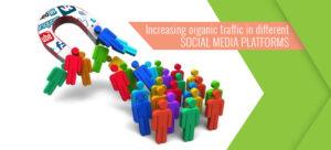 Tips to Increase Social Media Organic traffic